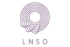Latvijas Nacionālais simfoniskais orķestris, VSIA