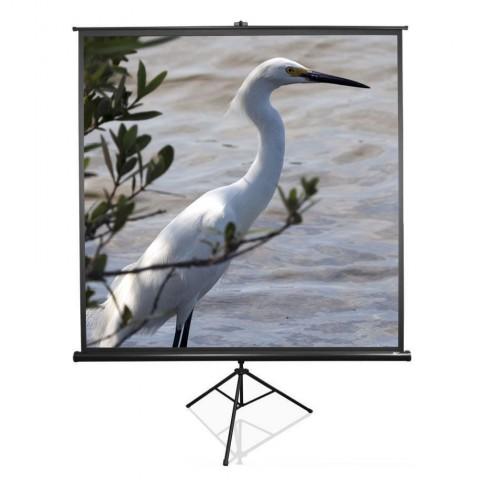 Video projektora ekrāns | 2×2 m